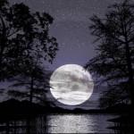 noche-de-luna-150x150