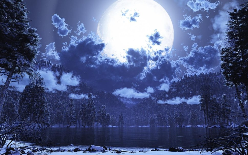 90750__beautiful-winter-and-moonlit-night_p