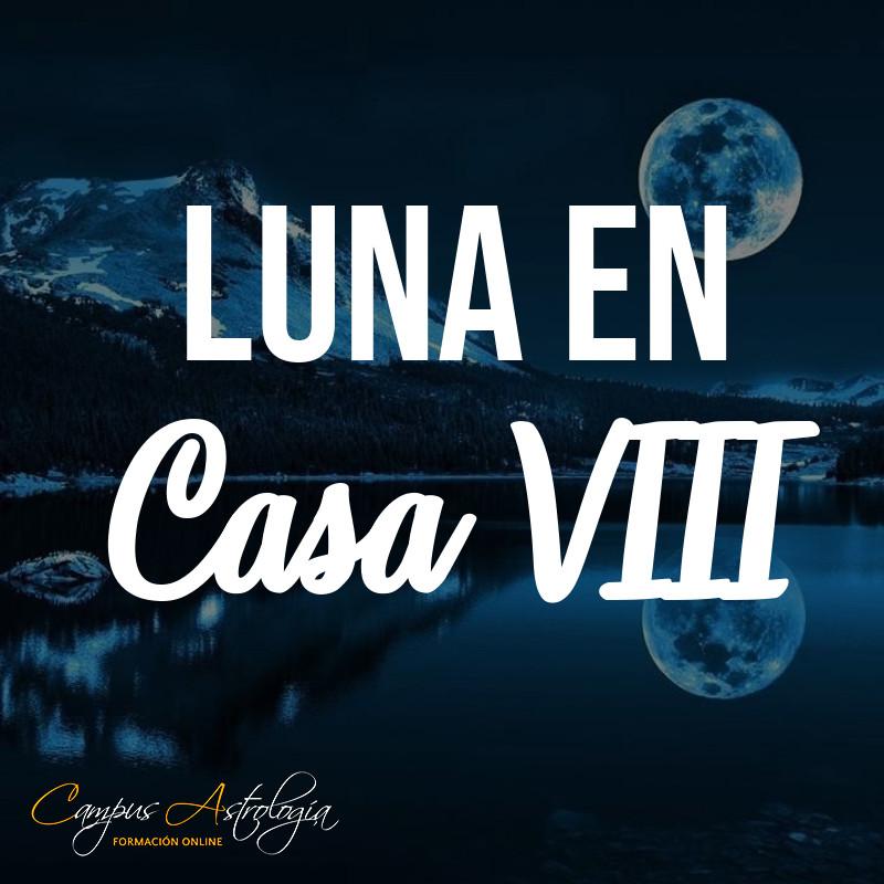 Luna en Casa 8: La Seguridad no existe